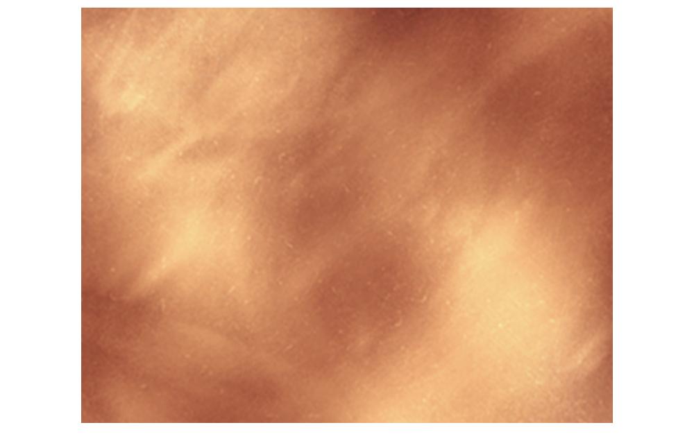 Christine Maurer-Roedig